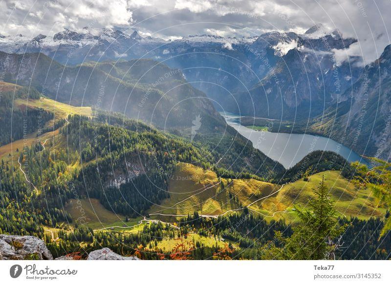 Königssee #4 Umwelt Natur Landschaft Pflanze ästhetisch Berchtesgaden Berchtesgadener Alpen Farbfoto Außenaufnahme Tag