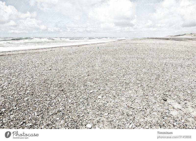 Wasser und Steine Ferien & Urlaub & Reisen Umwelt Natur Urelemente Sand Schönes Wetter Küste Strand Nordsee Dänemark gehen Blick ästhetisch hell natürlich blau