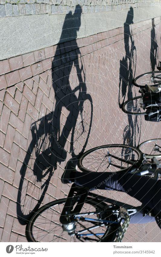 Dynamisch | mit Schatten und Dynamo Fahrrad Fahrradfahren Straße Pflastersteine Fahrradweg Fahrraddynamo 3 Verkehr Verkehrswege Mobilität