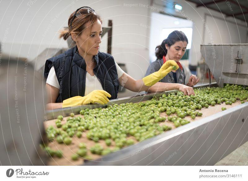 arbeitende Frauen in der Olivenverpackung Frucht Arbeit & Erwerbstätigkeit Beruf Fabrik Industrie Business Erwachsene Hand Handschuhe wählen Kontrolle Qualität