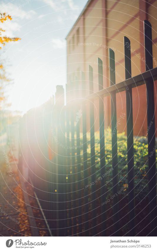 Metallzaun mit Gegenlicht im Herbst Abendsonne Achtsamkeit Außenaufnahme Besinnung Chemnitz Jahreszeit Laub Oktober Outdoor Ruhe Sonnenlicht Spaziergang Tag