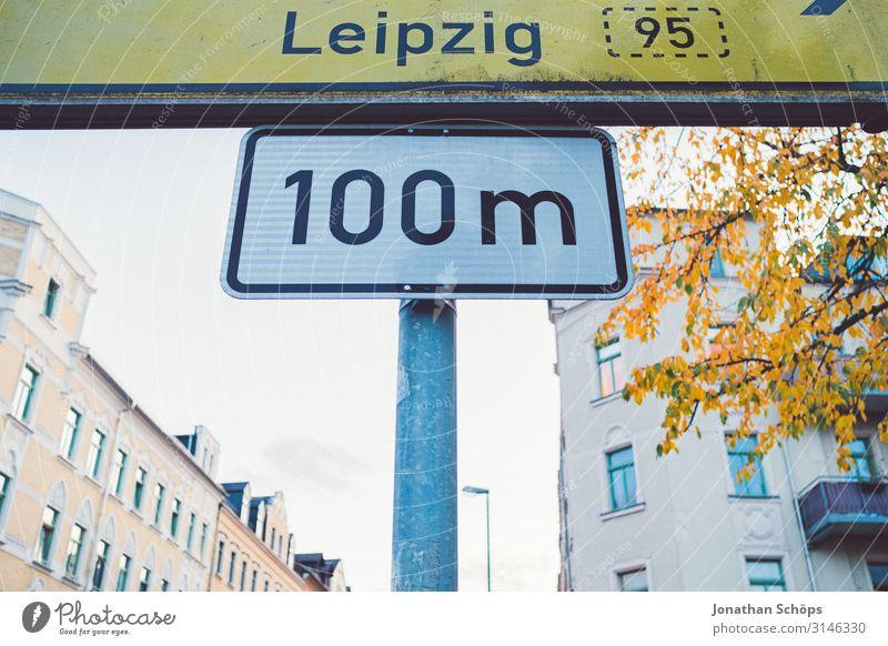 100m nach Leipzig ruhig Natur Herbst Blatt Wald gelb achtsam Vergänglichkeit Abendsonne Chemnitz Jahreszeiten Oktober Spaziergang Tag farbig goldene Stunde
