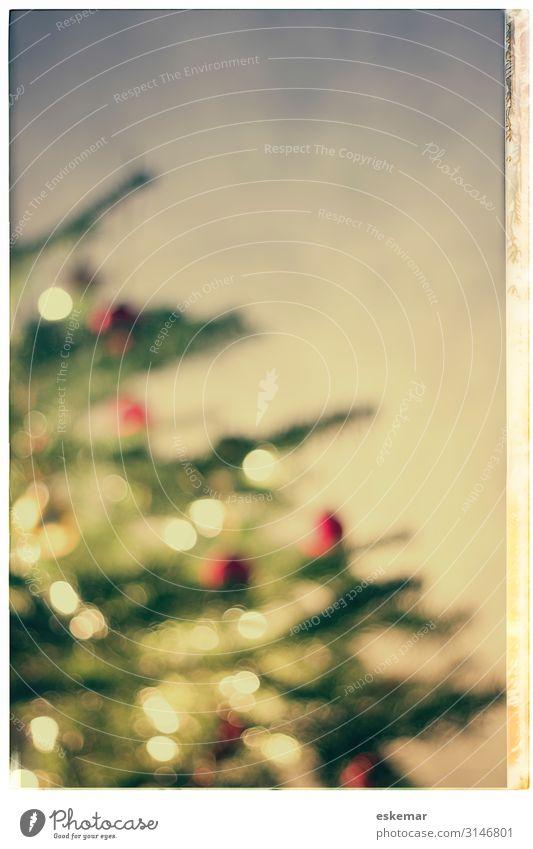 christmas tree, defocused Weihnachten & Advent schön grün rot Baum Innenarchitektur Feste & Feiern Zusammensein Stimmung Häusliches Leben Wohnung