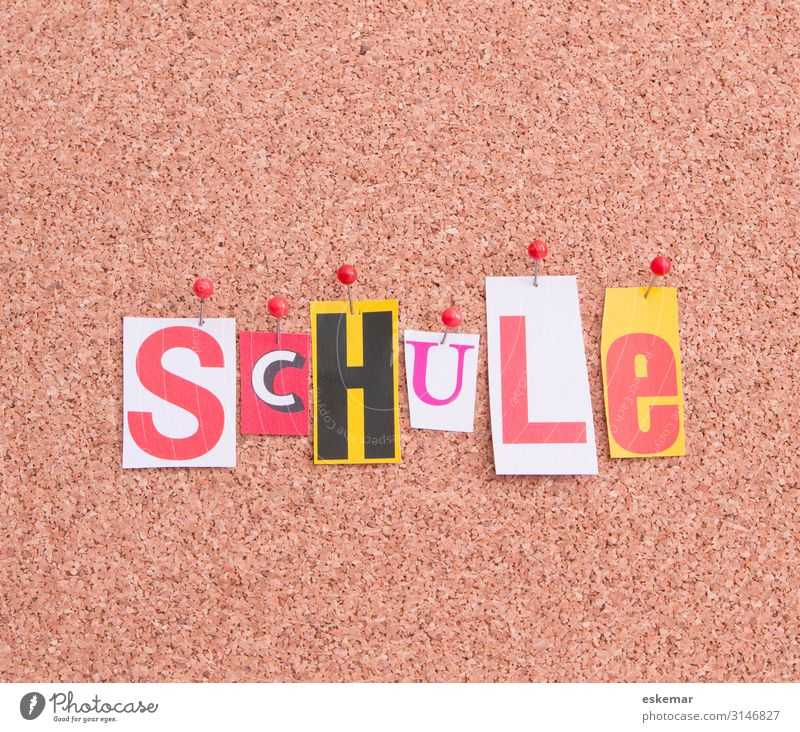 Schule Kindererziehung Bildung Wissenschaften Erwachsenenbildung Schulhof Klassenraum Schriftzeichen Wort Schriftzug Text lernen Farbfoto Gedeckte Farben