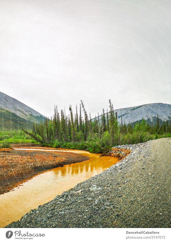 Landschaftsbild eines Flusses entlang einer Schotterstraße Yukon Dempster Highway Hügel Berge u. Gebirge Wald Straße Wildnis Tombstone National Park Schotterweg