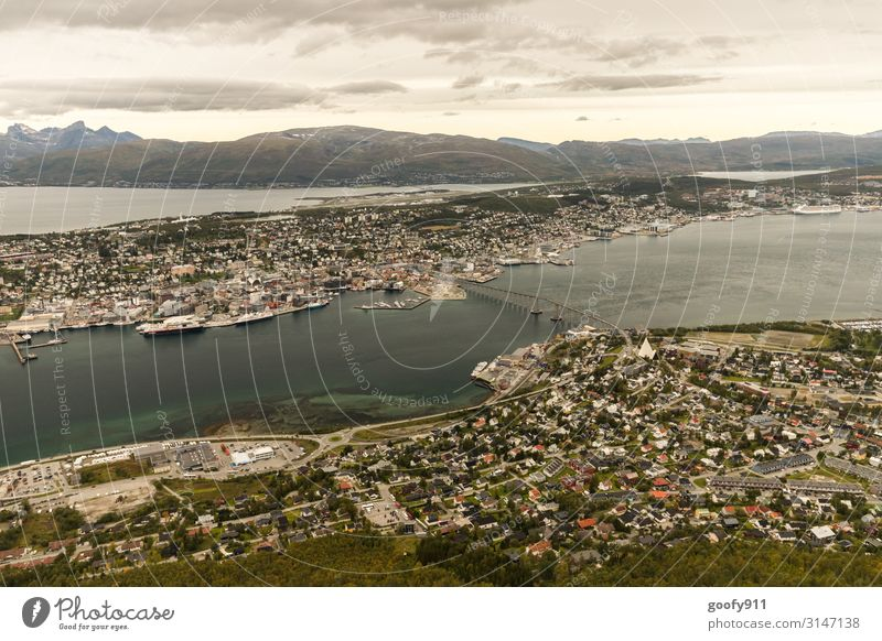 Tromsö (Norwegen) Ferien & Urlaub & Reisen Tourismus Ausflug Abenteuer Ferne Freiheit Sightseeing Städtereise Expedition Natur Landschaft Himmel Wolken Horizont