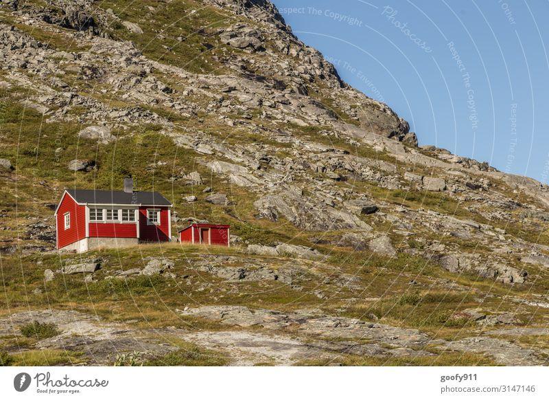 Hoch oben Ferien & Urlaub & Reisen Tourismus Ausflug Abenteuer Ferne Freiheit Expedition Natur Landschaft Himmel Wolkenloser Himmel Horizont Schönes Wetter Gras
