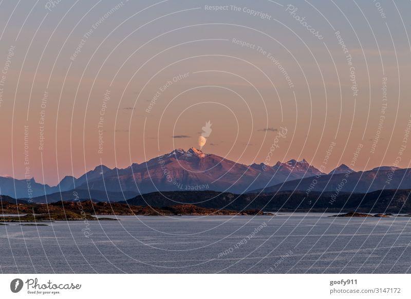 Goodbye Norwegen Ferien & Urlaub & Reisen Ausflug Abenteuer Ferne Freiheit Kreuzfahrt Expedition Natur Landschaft Wasser Himmel Wolkenloser Himmel Nachthimmel