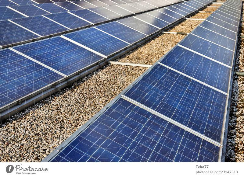Solarzellen #1 Technik & Technologie Energiewirtschaft Erneuerbare Energie Sonnenenergie ästhetisch Zufriedenheit Farbfoto Außenaufnahme Tag