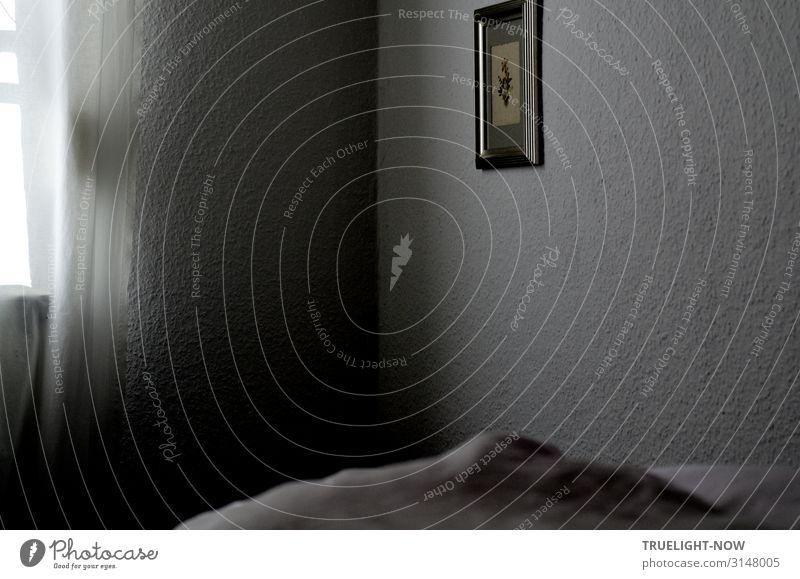 Der Tag bricht an! Wohnung Bett Schlafzimmer Fenster Vorhang Bild Wand Bettdecke dunkel grau schwarz silber weiß Verschwiegenheit Angst Senior Einsamkeit