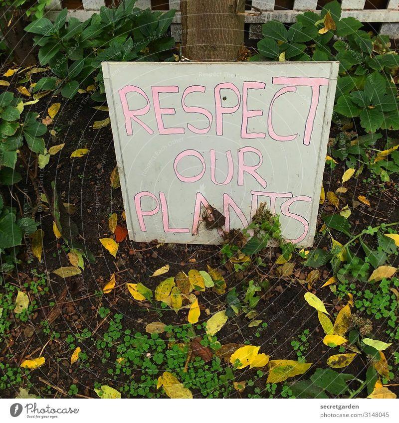 UTHH19_Respekt und so Garten Umwelt Natur Erde Herbst Klima Klimawandel Pflanze Baum Blatt Park Menschenleer Schriftzeichen Schilder & Markierungen