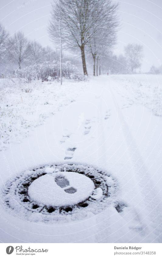 Fußspuren im Schnee Umwelt Natur Landschaft Winter Wetter Eis Frost Baum Verkehrswege Wege & Pfade kalt Stadt weiß Neugier Fernweh Einsamkeit einzigartig