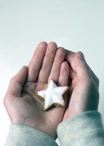 Weihnachtsstern Teigwaren Backwaren Süßwaren Zimtstern Plätzchen Ernährung Weihnachten & Advent Silvester u. Neujahr Kindheit Leben Hand Finger Winter