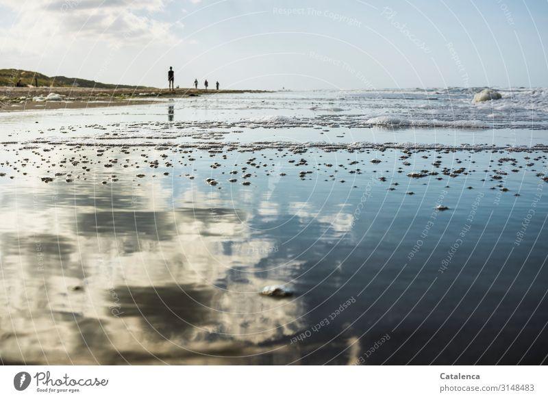 Am Strand Ferien & Urlaub & Reisen Sommer Sommerurlaub Meer androgyn 4 Mensch Natur Landschaft Himmel Wolken Horizont Schönes Wetter Wellen Küste Nordsee
