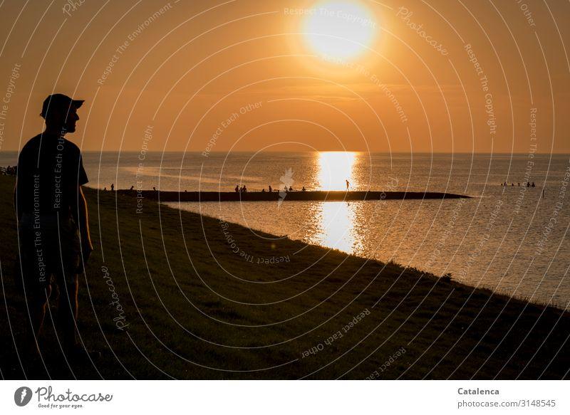 Betrachtung androgyn 1 Mensch Menschengruppe Umwelt Natur Urelemente Wasser Wolkenloser Himmel Horizont Sommer Schönes Wetter Küste Strand Nordsee Anlegestelle