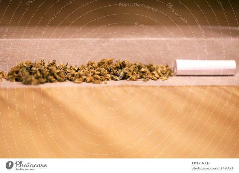sWEED. IV Gesundheitswesen Rauchen Rauschmittel Erholung Meditation Party Kultur Jugendkultur genießen rebellisch Freude Akzeptanz Verantwortung achtsam