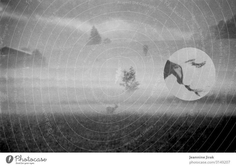 Traumlandschaft II Frau Erwachsene Gesicht 1 Mensch Natur Landschaft Nebel Feld Wildtier Reh träumen Traurigkeit Trauer Liebeskummer Sehnsucht Einsamkeit