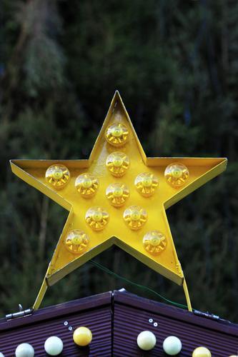 Stern Weihnachten & Advent Pflanze Baum Hütte Mauer Wand Fassade Stern (Symbol) Zeichen Ornament Kugel gelb Weihnachtsmarkt Außenaufnahme Menschenleer Tag