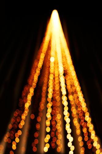 Lichterbaum Weihnachten & Advent Kunstwerk Ornament Graffiti Kugel Linie leuchten gold Weihnachtsbaum Lichterkette Farbfoto Außenaufnahme Experiment Muster