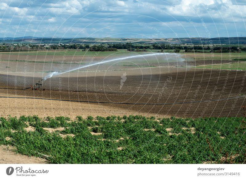Gießen von grünen Pflanzen und gepflügten Böden. Neu gepflanzt Ernährung Sommer Arbeit & Erwerbstätigkeit Industrie Werkzeug Technik & Technologie Metall