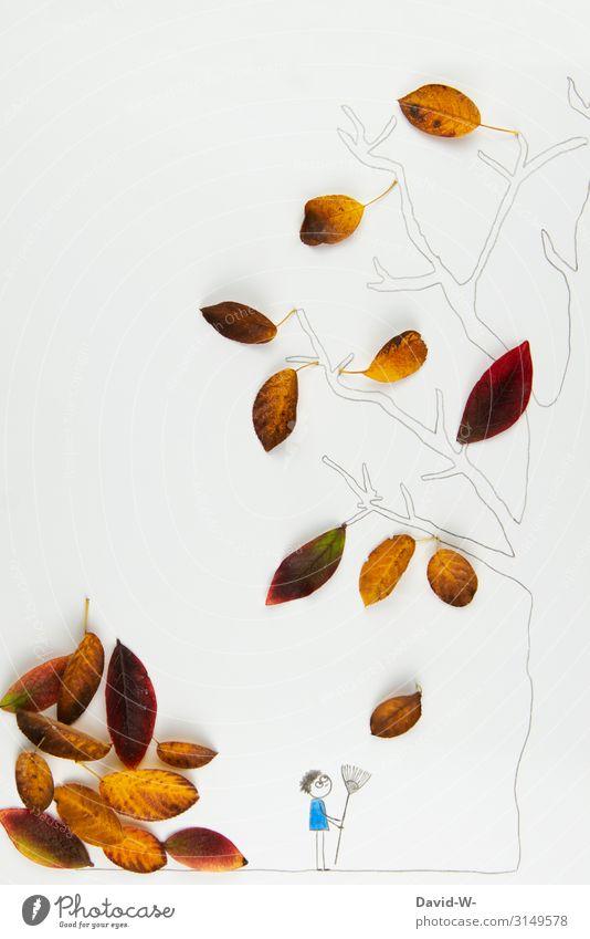 Herbst: Das Laub fällt zu Boden Mensch Mann Erwachsene Leben 1 Kunst Künstler Kunstwerk Umwelt Natur Schönes Wetter Baum beobachten Laubbaum Blatt Garten