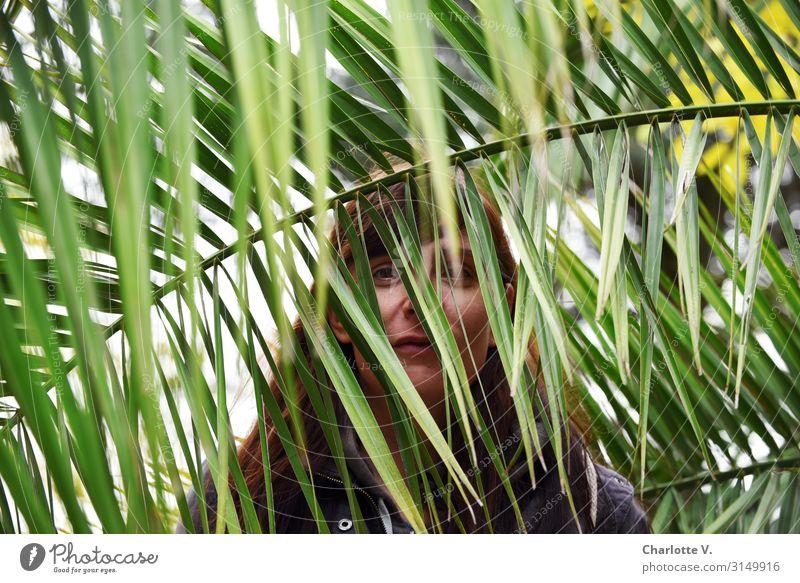 Im Dschungel   UT HH19 Mensch feminin Frau Erwachsene 30-45 Jahre Natur Pflanze Grünpflanze Wildpflanze exotisch Palmenwedel brünett beobachten entdecken