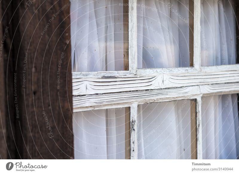 Schwarzwälder Sprossenfenster Ferien & Urlaub & Reisen Häusliches Leben Haus Bauernhof Fenster Holz Glas alt kaputt blau schwarz weiß Gefühle Schwarzwald