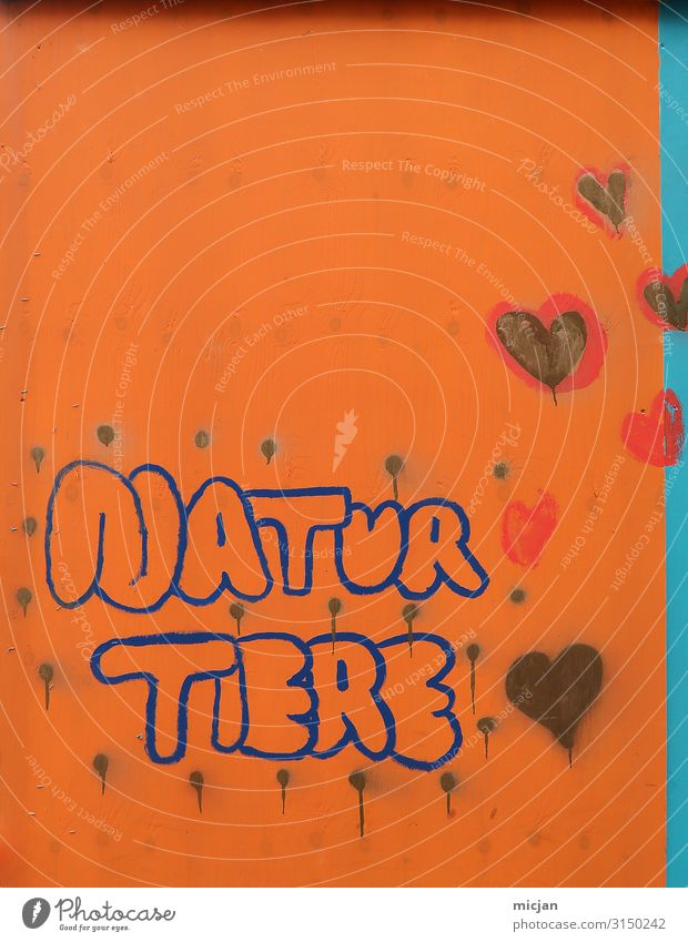 Natur Tiere blau Stadt Leben Graffiti Wand Umwelt Liebe natürlich Kunst Mauer orange Schriftzeichen Herz Kreativität