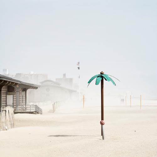 Klimawandel auf Coney Island Ferien & Urlaub & Reisen Tourismus Ausflug Städtereise Sommer Sommerurlaub Strand Meer Umwelt Natur Landschaft Wetter Sturm Pflanze
