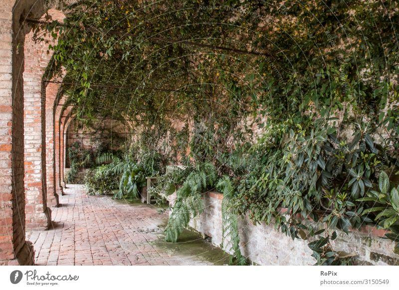 Arkaden im Park eines alten Schlosses. Flur schloss kloster gebäude kirche park säulen kreuzgang architektur gewölbe sakralbau stein rock sandstein church
