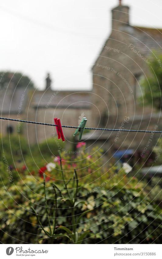 Wäscheleine Ferien & Urlaub & Reisen Häusliches Leben Umwelt Natur Pflanze Himmel schlechtes Wetter Garten Großbritannien Einfamilienhaus Mauer Wand
