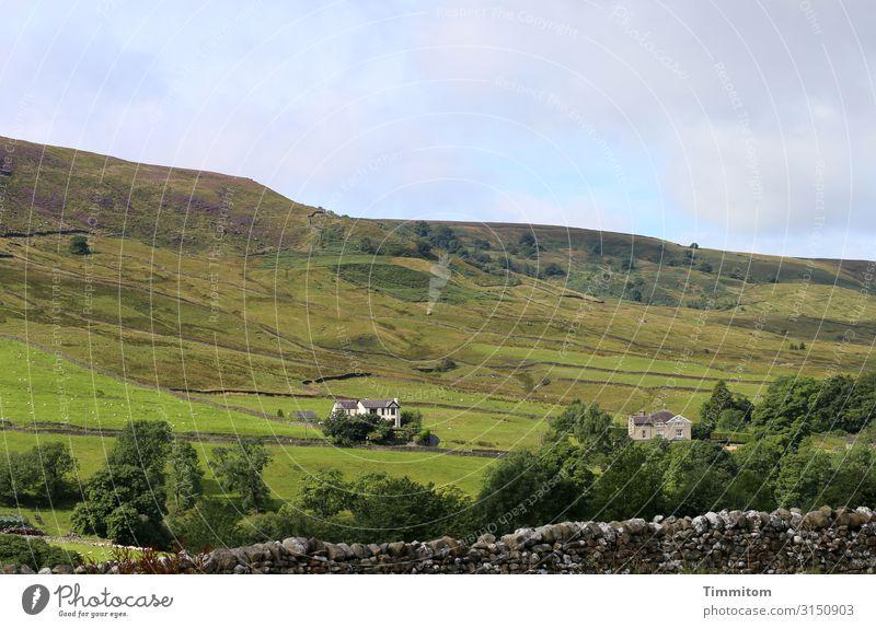 Landschaft Ferien & Urlaub & Reisen Umwelt Natur Pflanze Himmel Schönes Wetter Wiese Feld Hügel Großbritannien Haus Wege & Pfade ästhetisch natürlich blau grün