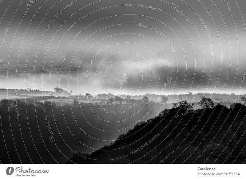 Landschaft in Moll Natur Luft Wassertropfen Himmel Wolken Horizont Winter schlechtes Wetter Nebel Pflanze Baum Gras Sträucher Wiese Feld Wald Hügel Hochmoor