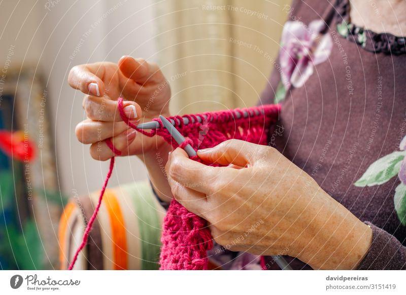 Hände einer Frau, die einen Wollpullover strickt Design Erholung Freizeit & Hobby Basteln Handarbeit stricken Wohnzimmer Arbeit & Erwerbstätigkeit Handwerk