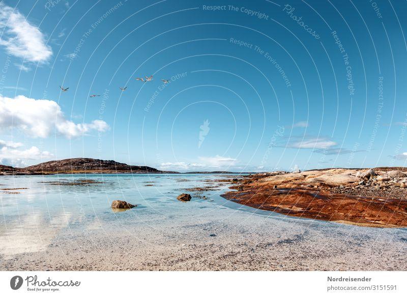 Schären Schwimmen & Baden Ferien & Urlaub & Reisen Ferne Freiheit Sommer Sommerurlaub Sonne Strand Meer Insel Natur Landschaft Himmel Wolken Schönes Wetter