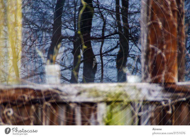 unscharf | drinnen und draußen alt blau Fenster Holz gelb Kunst braun Arbeit & Erwerbstätigkeit Freizeit & Hobby Glas ästhetisch Idylle Kreativität authentisch