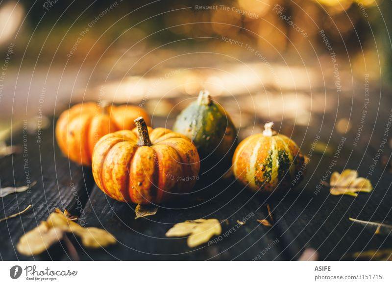 Thanksgiving Hintergrund mit Kürbissen auf einem rustikalen Holztisch Gemüse Garten Dekoration & Verzierung Tisch Feste & Feiern Erntedankfest Halloween Natur