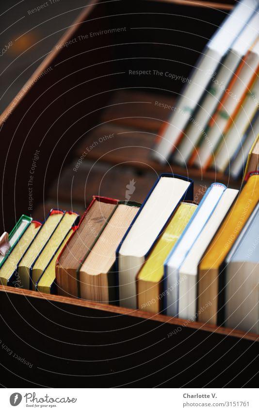 Bücherkiste | UT HH19 Lifestyle Stil Freizeit & Hobby lesen lernen Bildung Buchhandel Buchladen Medien Printmedien Bibliothek Kiste Holz stehen eckig einfach