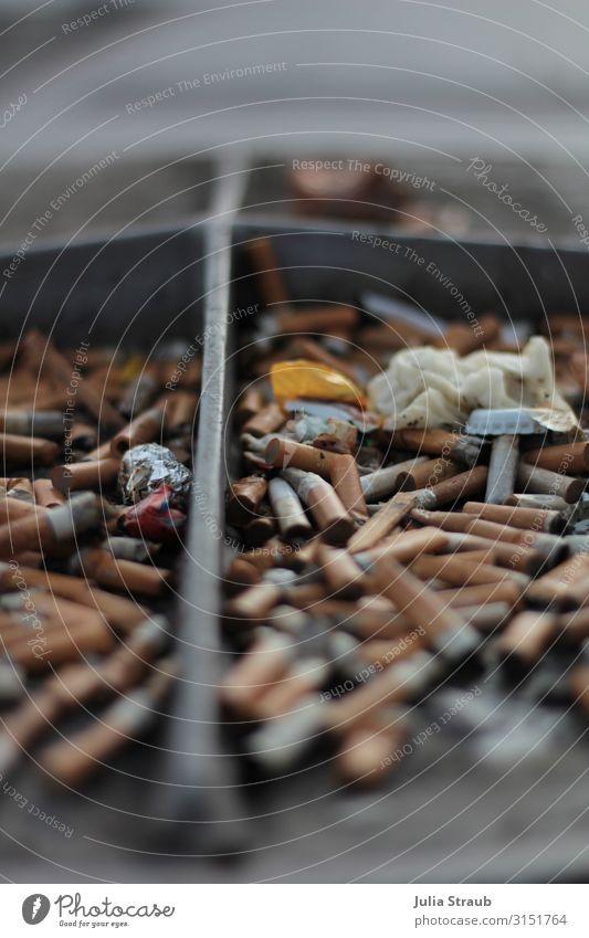 Kippen Müll abgebrannt Hamburg Rauchen dreckig Umweltverschmutzung Zigarette Zigarettenstummel Aschenbecher Farbfoto Außenaufnahme Tag Zentralperspektive