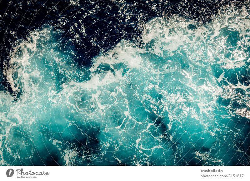 meer Umwelt Landschaft Urelemente Wasser Wellen Meer Schifffahrt Binnenschifffahrt Kreuzfahrt Bootsfahrt An Bord Ferien & Urlaub & Reisen Naturgewalt Gischt