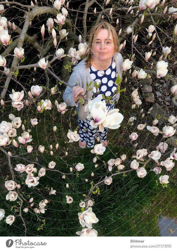 Frau mit getupftem Kleid steht unter einer Magnolie Erwachsene 45-60 Jahre Frühling Baum Magnoliengewächse Magnolienbaum Magnolienblüte Garten Strickjacke