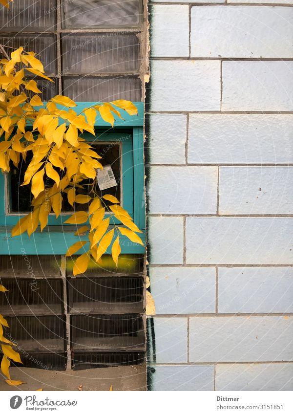 berliner herbst Berlin Deutschland Europa Stadt Hauptstadt Menschenleer Industrieanlage Remise Mauer Wand Fenster Stein Glas blau türkis Zufriedenheit Kultur