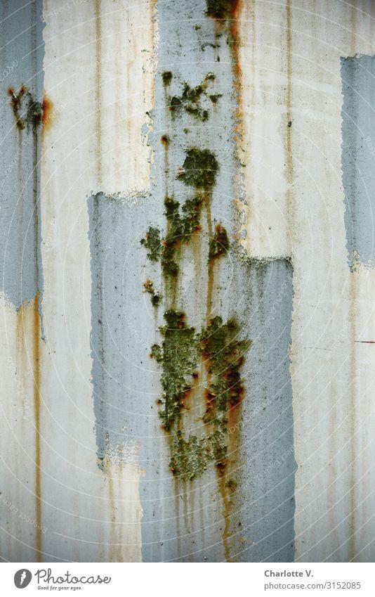 Strukturen   UT HH19 Container Containerwand Mauer Wand Metall Linie alt dreckig authentisch einfach kalt kaputt trashig blau weiß einzigartig Verfall