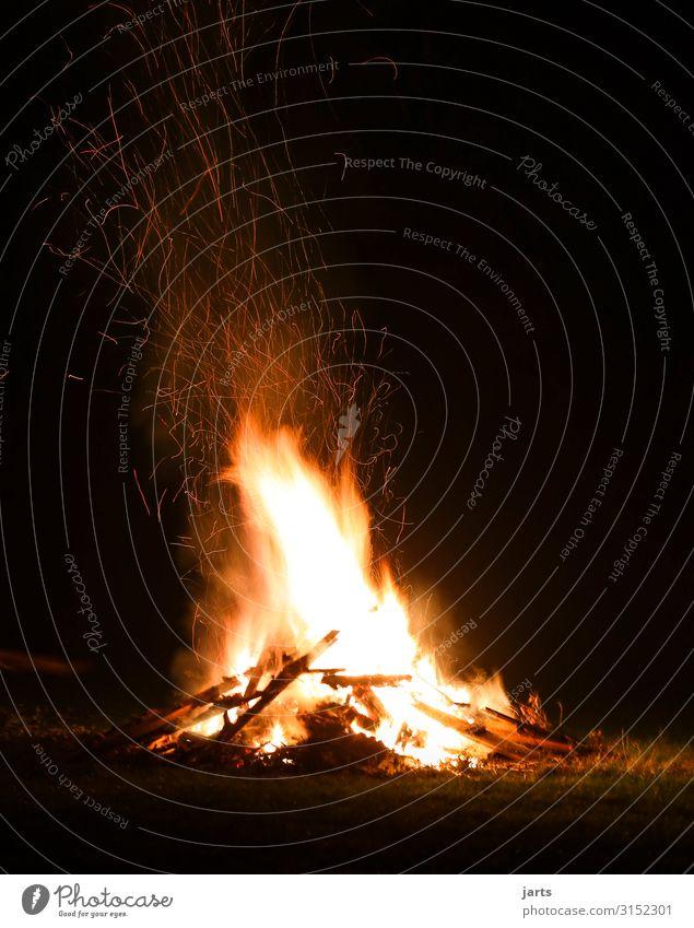 Bratfestfeuer II Natur gelb natürlich Wiese hell gold Kraft Feuer heiß