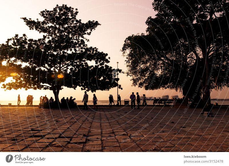 Ocean boulevard during sunset, Kochi, Kerala, India exotisch Ferien & Urlaub & Reisen Tourismus Sightseeing Sommer Mensch Menschenmenge Natur Küste Meer Stadt