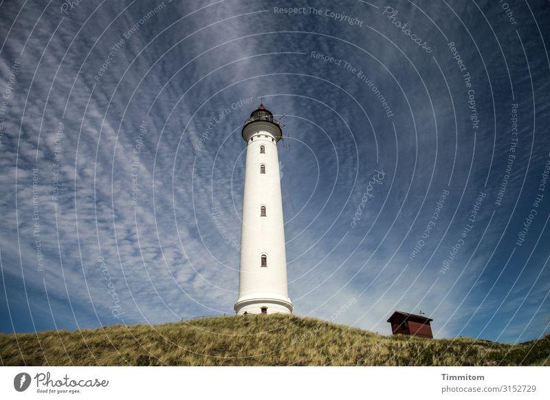 Wolkendominanz Ferien & Urlaub & Reisen Umwelt Natur Landschaft Himmel Schönes Wetter Pflanze Nordsee Düne Lynvig Fyr Dänemark Leuchtturm Scheune Lyngvig Fyr