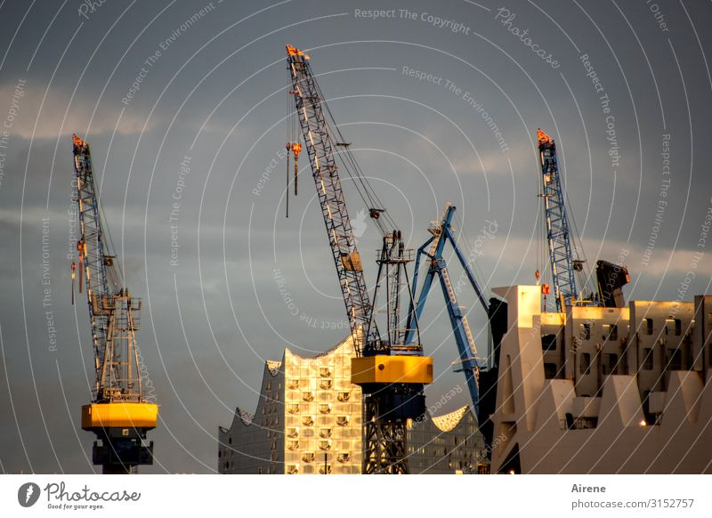 Die Arbeit geht weiter   UT Hamburg Konzerthalle Himmel Sonnenlicht Hamburger Hafen Hafenstadt Sehenswürdigkeit Elbphilharmonie Kran leuchten Bekanntheit