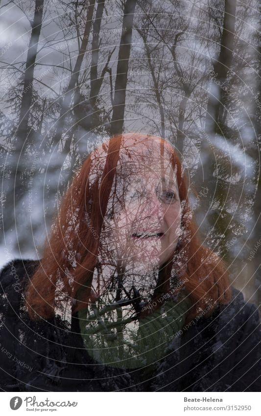 Winterträume (2) Frau Ferien & Urlaub & Reisen Natur Baum Erholung Freude Wald Gesundheit Erwachsene Leben natürlich Schnee Sport Bewegung Ausflug