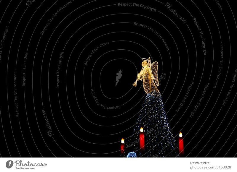 Engel Nachtleben Weihnachten & Advent androgyn Körper Dortmund Sehenswürdigkeit Heiligenschein Kerze Zeichen Ornament Musik hören ästhetisch Flügel Tanne