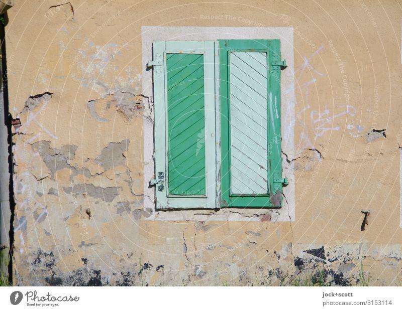 wohne grün Stil Schönes Wetter Brandenburg Altbau Wand Fenster Fensterladen Dekoration & Verzierung Holz Streifen außergewöhnlich eckig einzigartig positiv